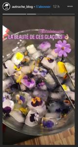des glaçons avec des fleurs